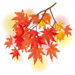 紅葉狩りと花見の違いって何?何故紅葉は狩って花は見るの?