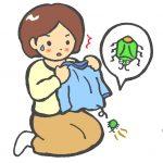 カメムシ対策教えて!カメムシが洗濯物に付いて困る!